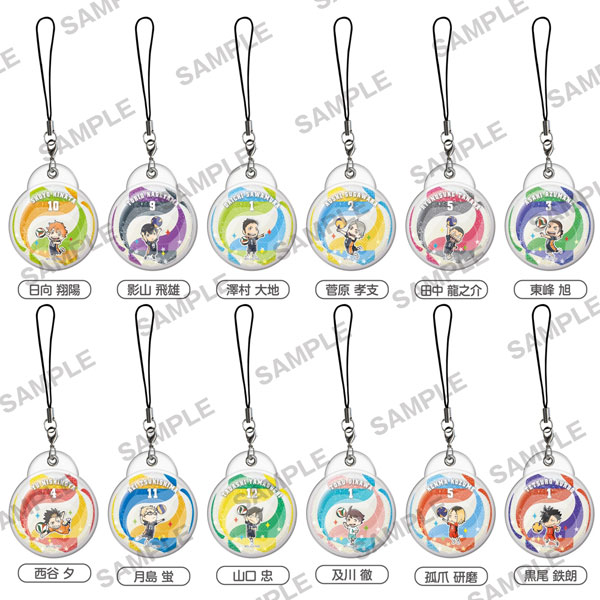 Haikyuu- Water in Collection Straps Set of 12