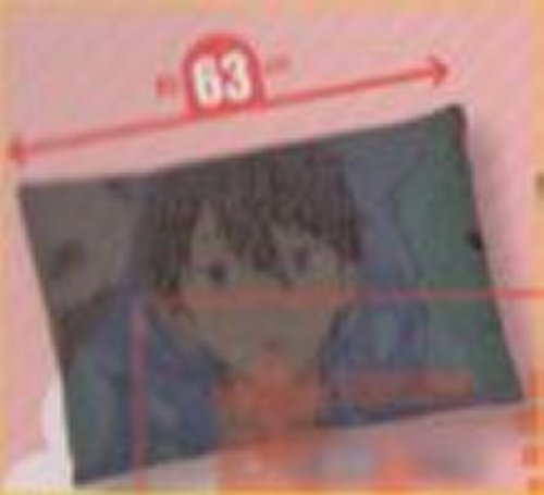 Free Eternal Summer - Haruka Nanase Pillow Case