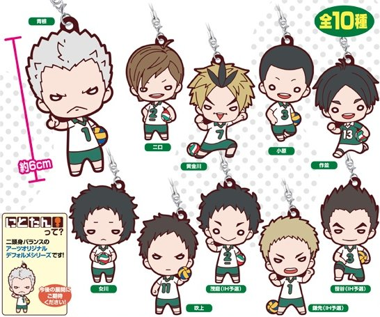 Haikyuu - Date Tech High Rubber Strap SINGLE BLIND BOX