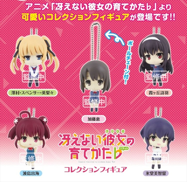 Saekano How to Raise a Boring Girlfriend - Collection Figure Keychain Set of 5