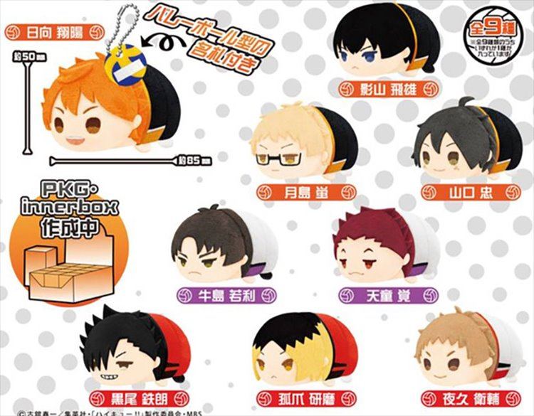 Haikyuu - Mochi mochi Mascot Single Blind Box