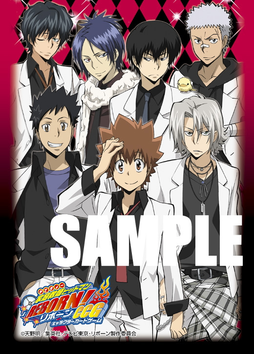 Katekyo Hitman Reborn - Card Sleeves