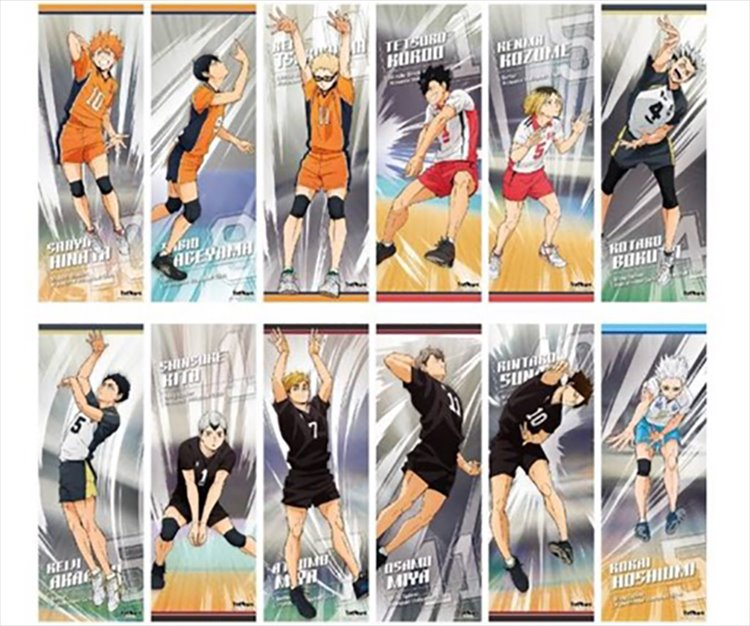 Haikyuu To the Top - Poster SINGLE BLIND BOX