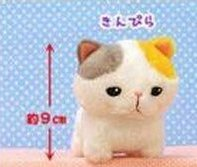 Amuse - Little Cat Plush A